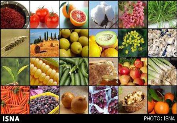 تولید 3 میلیون تن انواع محصولات کشاورزی در زنجان