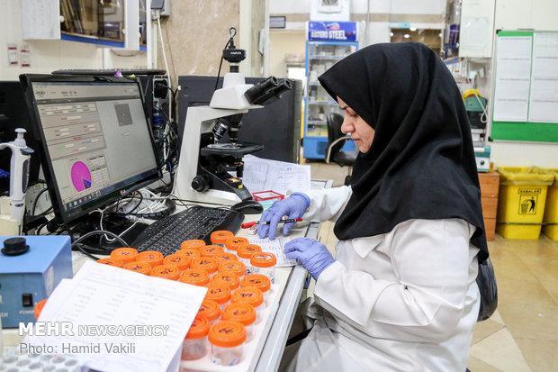 شرایط اعطای گرنت به محققان جوان و پژوهشگران اعلام شد