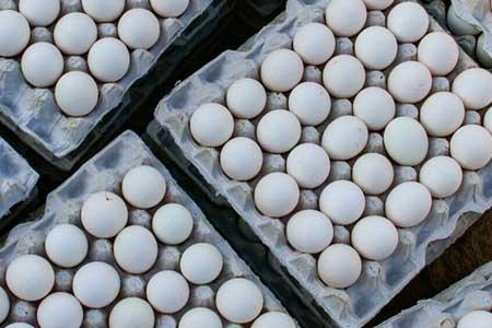 تخم مرغ کیلویی 12 هزارتومان اما شرط داره!