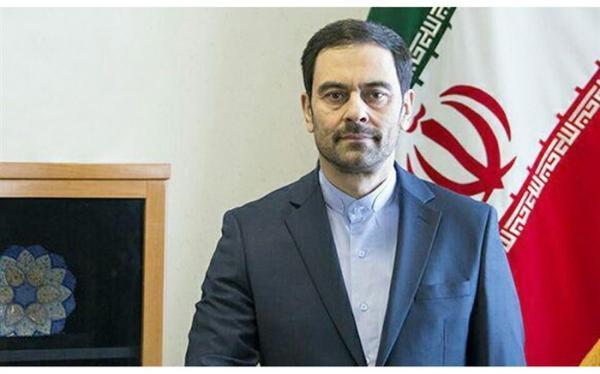 جامعه نخبه ایرانی خارج از کشور سرمایه های ملی هستند
