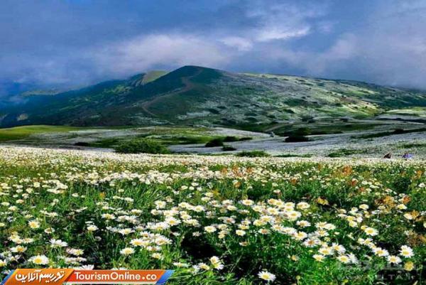 برگزاری رویدادهای هنری با هدف معرفی قابلیت های گردشگری و تاریخی