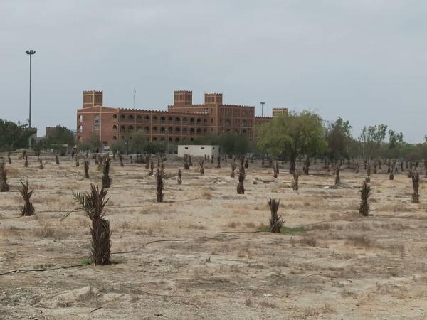 فاز نخست مرکز تحقیقات کشاورزى در دانشگاه آزاد میناب اجرا شد