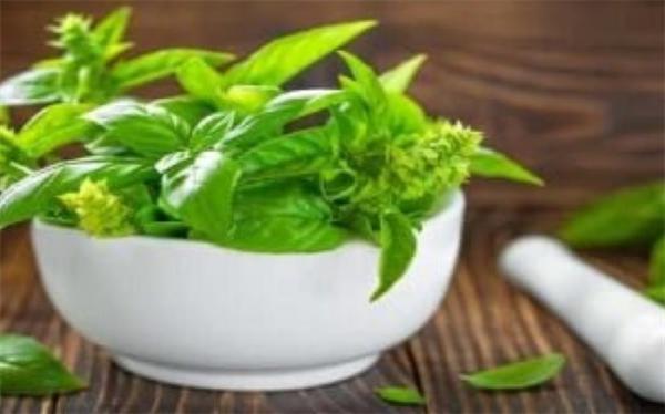 گیاهی برای مبارزه با افسردگی در زنان میانسال