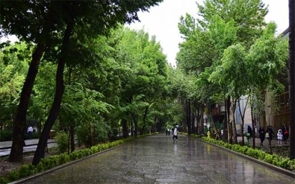 بارش باران در استان های شمالی
